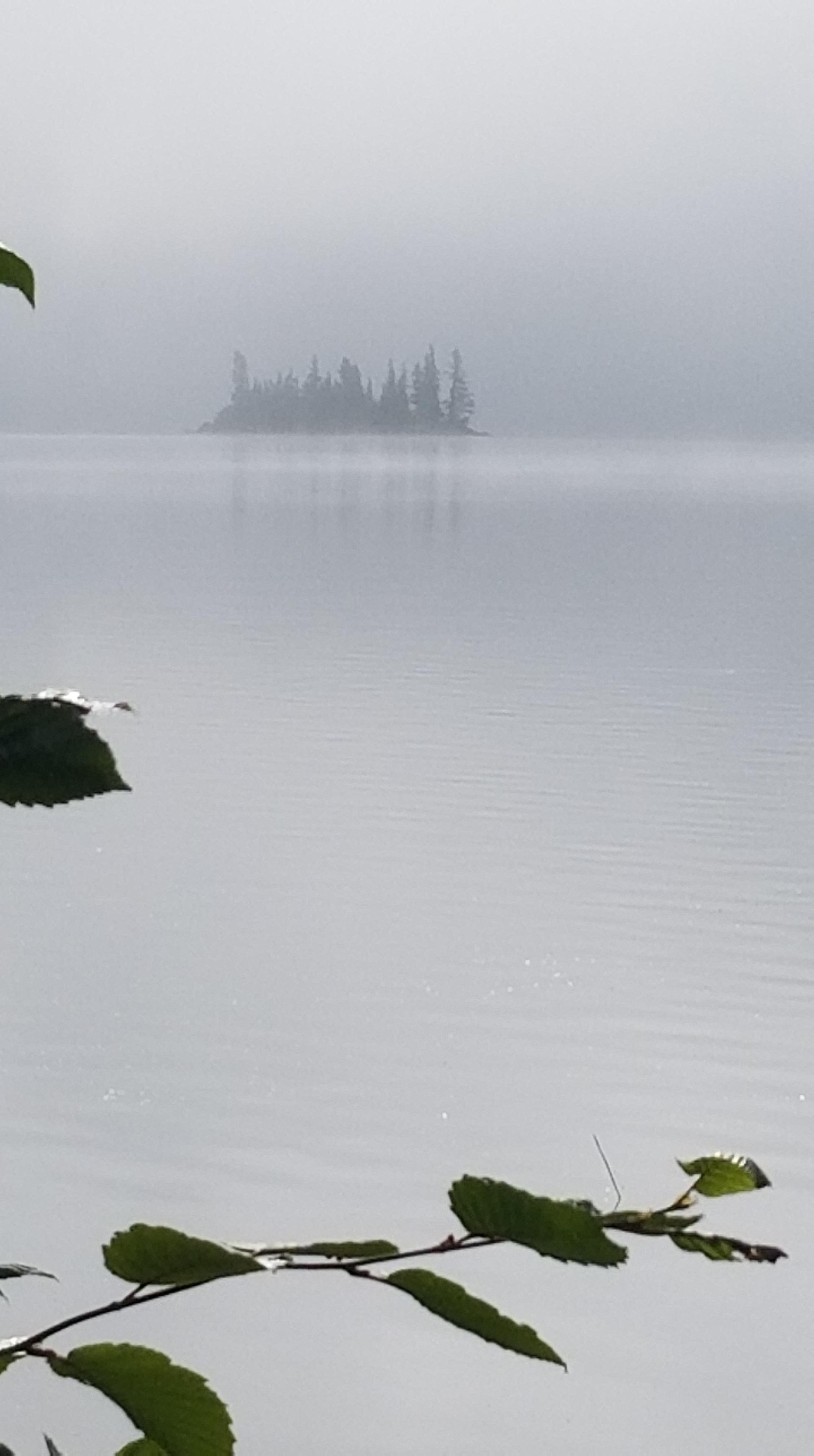jessica calm leaves island sun fog